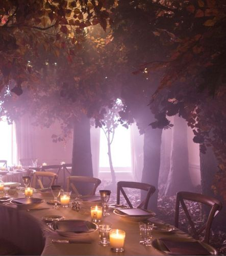 English oak hazelnut party