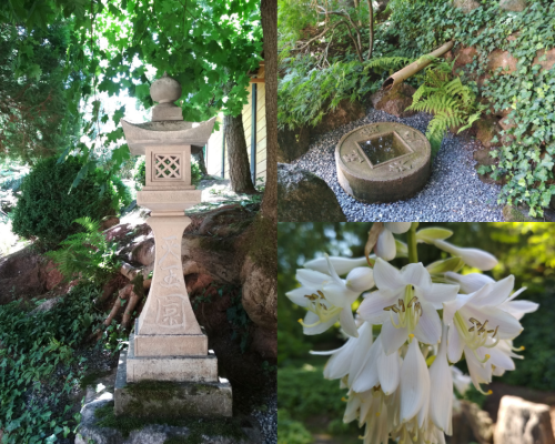 Japonská Jarków